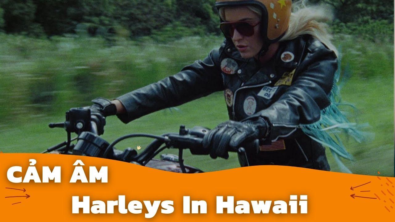 Cảm Âm HARLEYS IN HAWAII | Katy Perry | Sáo Trúc Hoàng Anh Chuẩn Nhất